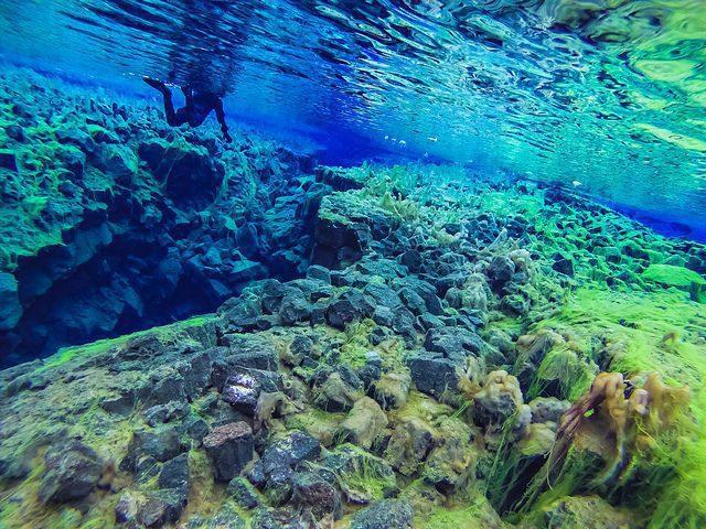 Parc national de Silfra en Islande