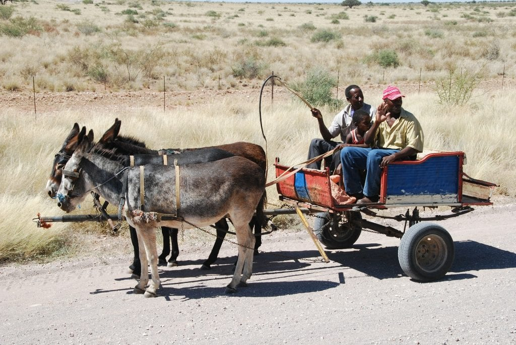 Transport gay en Namibie