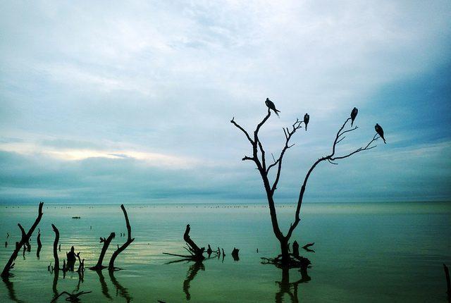 Île Holbox Cancun