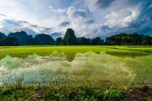Ninh Binh : la Baie d'Halong terrestre au Vietnam