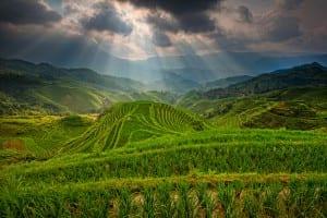 Les rizières de Longji
