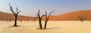 Destination gay de la Namibie