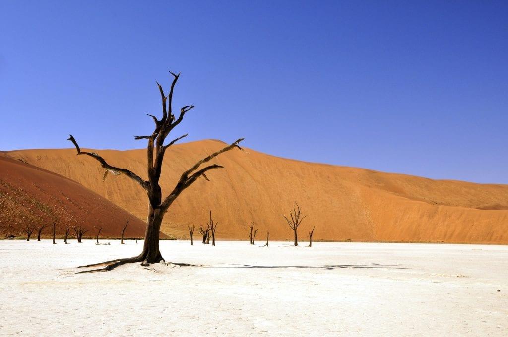 Que faire de gay en Namibie