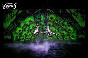 Spectacle de cirque à Hanoï