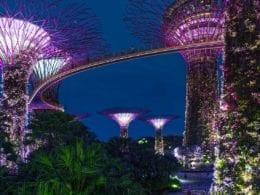 7 raisons de visiter Singapour