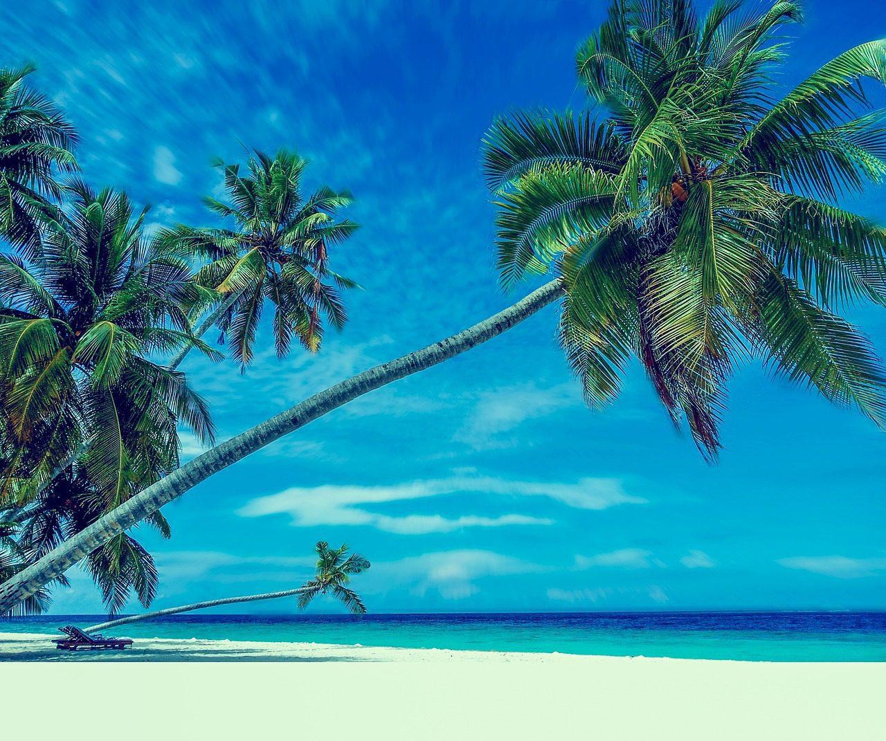 Guide gay de Tokelau