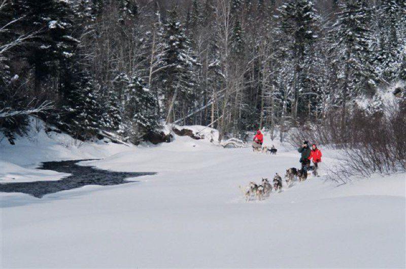 Vivre l'expérience du traineau à chiens près de Québec