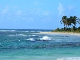 10 choses à voir sur un road trip en Guadeloupe