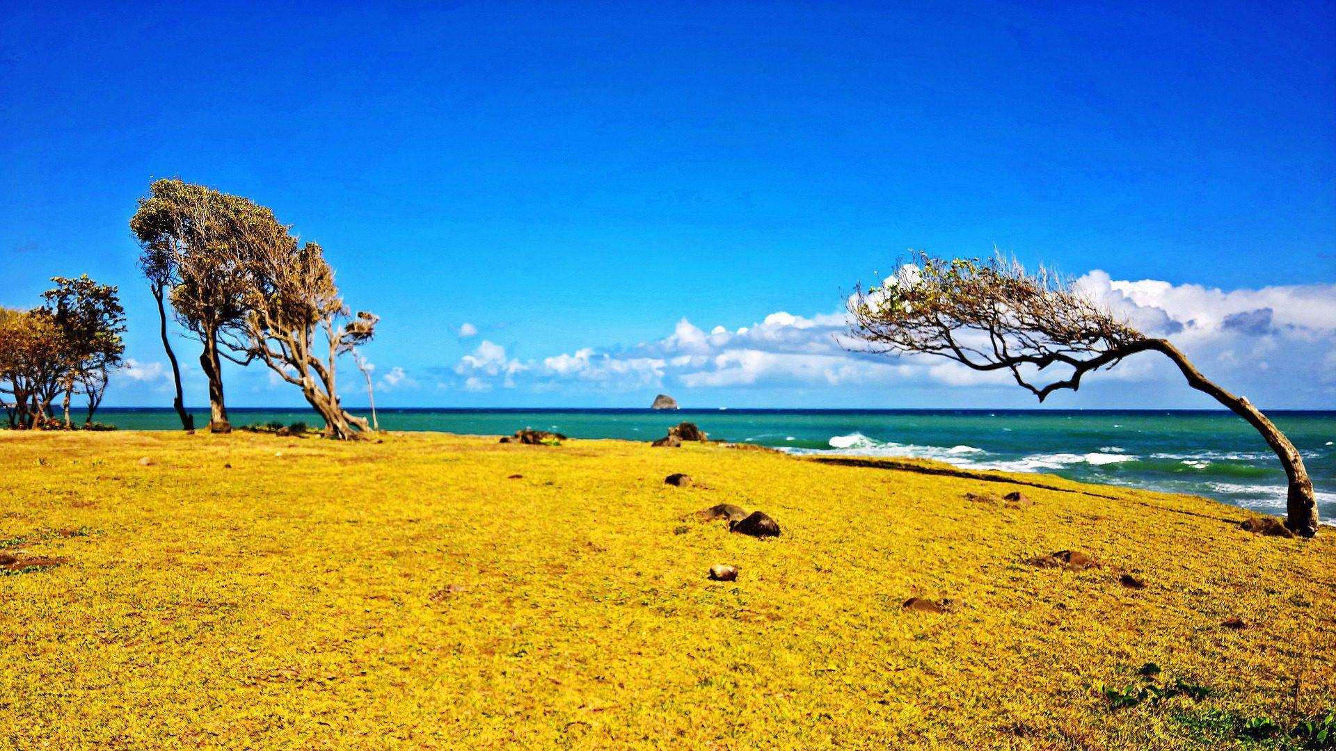 Destination gay de Guadeloupe
