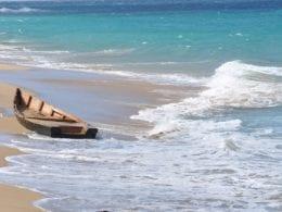 Porto Rico : Vieques, l'île sauvage à visiter
