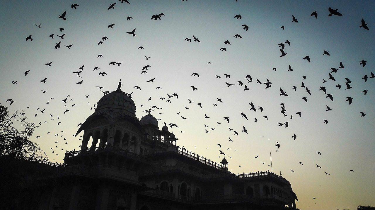 Guide gay de Jaipur