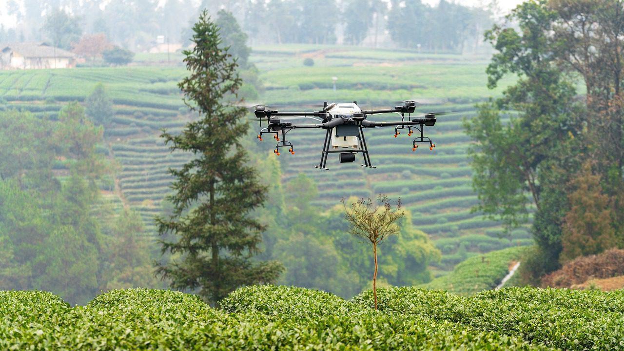Les 18 pays où les drones sont interdits