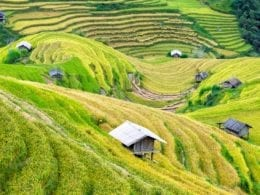 Comment faire une demande de visa pour le Vietnam