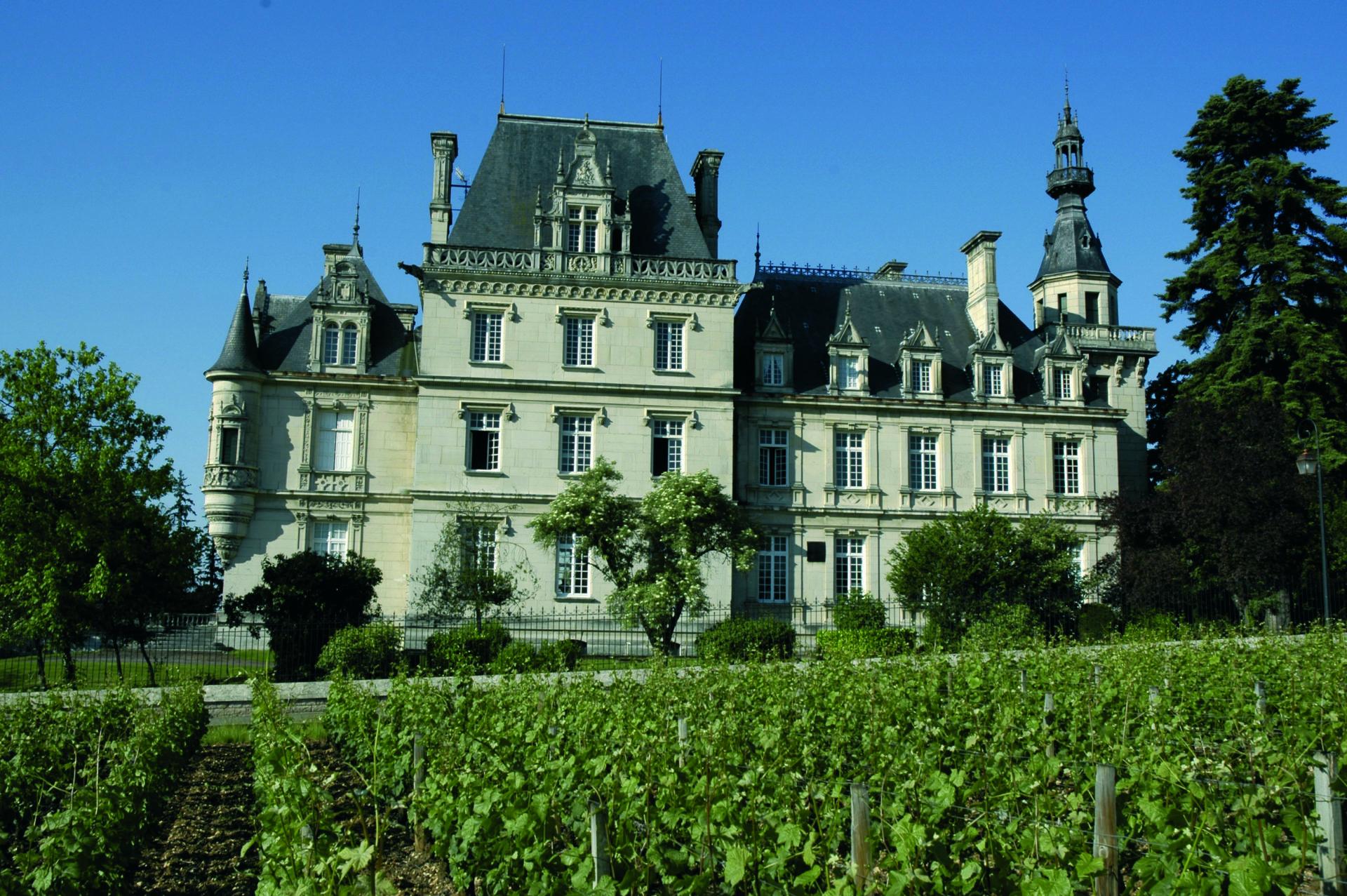 Pourquoi visiter Dijon