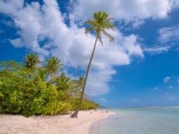 Les plus belles plages de la Guadeloupe