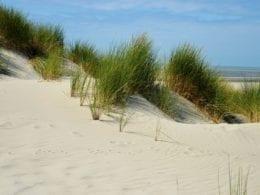 Des vacances sur la côte d'Opale pour cet été