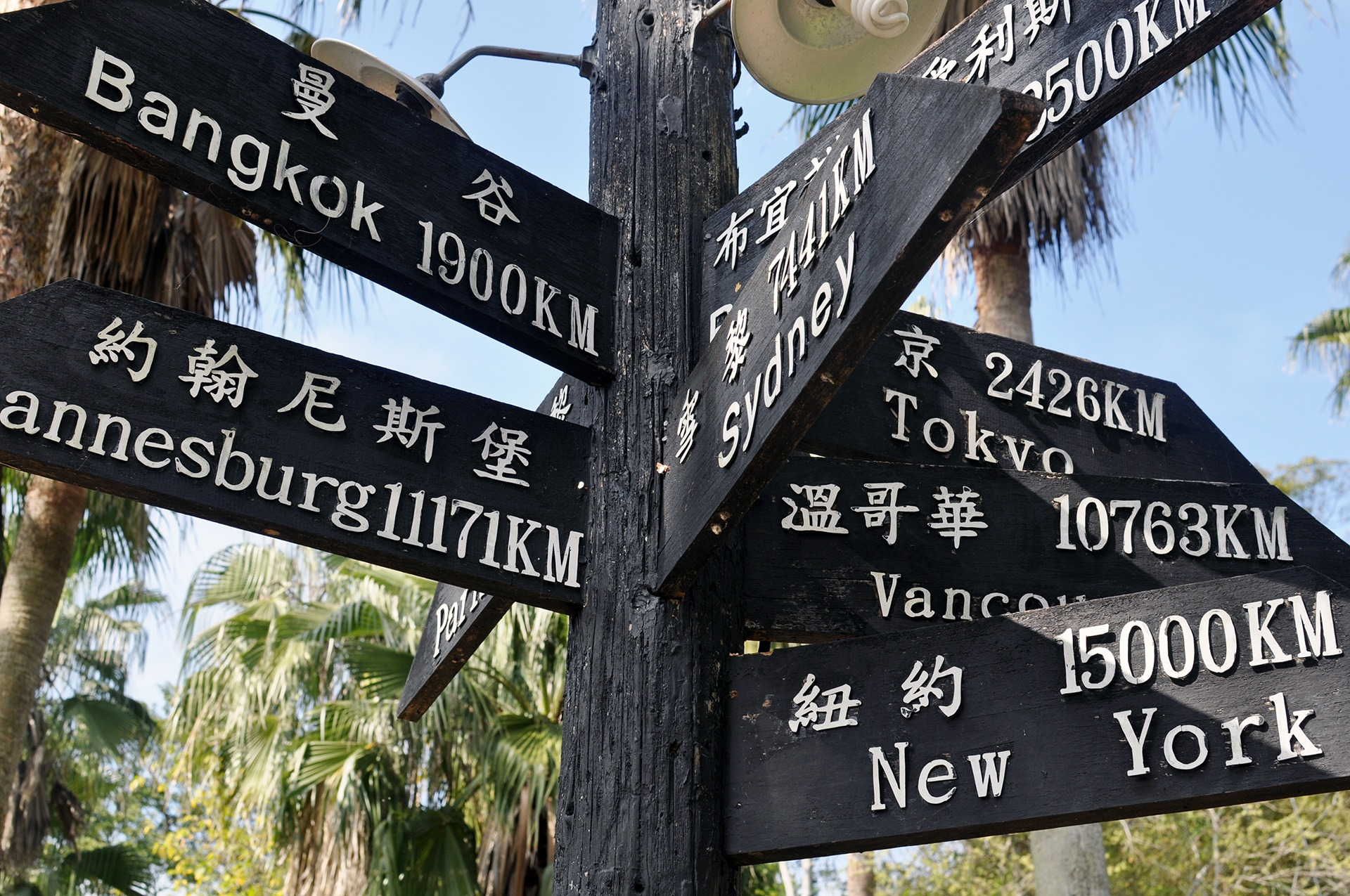 Choisir entre Bangkok ou New York comme prochaine destination?