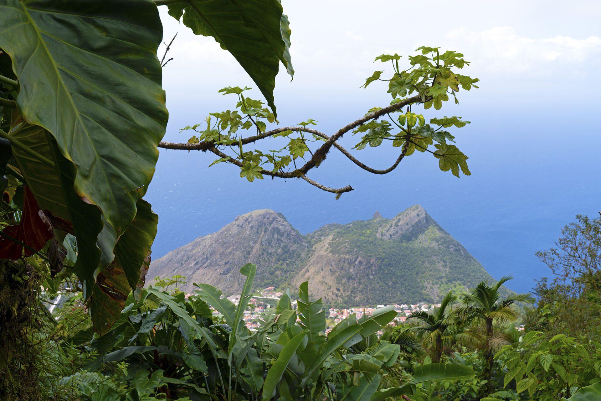 Destination gay de Saba