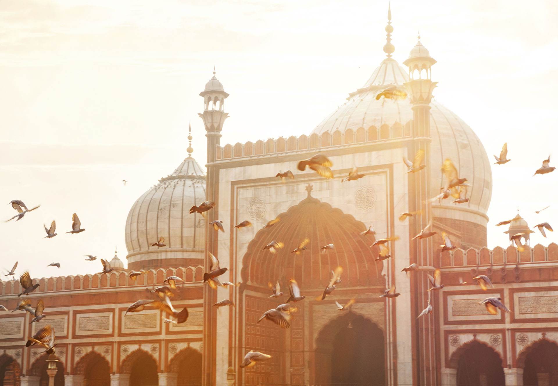 Guide gay de Delhi