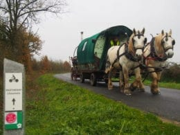 Rêvez, vivez bohème à bord d'une roulotte et chevaux avec Florian et Mickaël