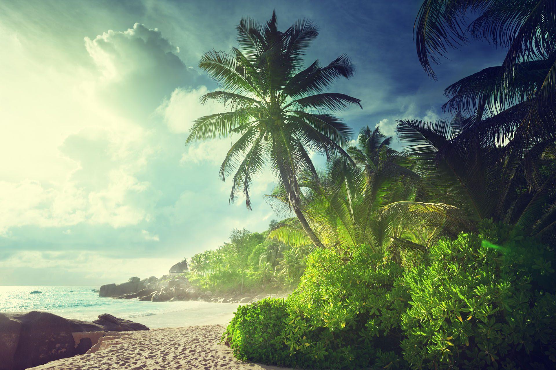 Voyage gay de l'île de La Réunion