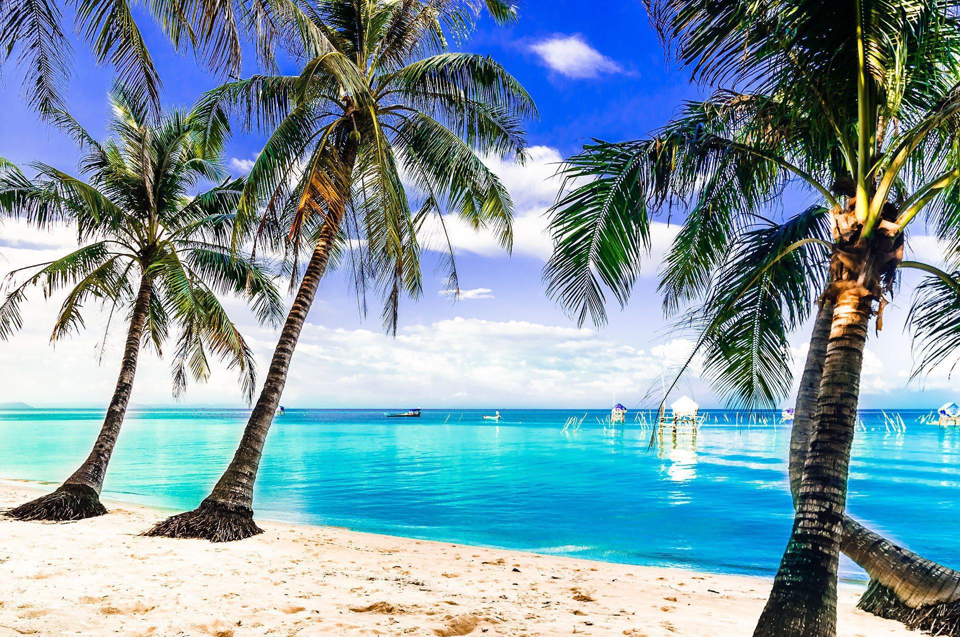 Les plus belles plages de la Réunion