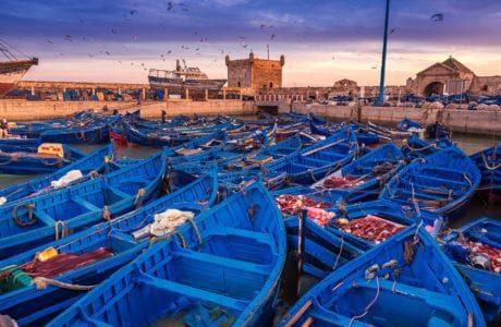 Quoi faire à Essaouira