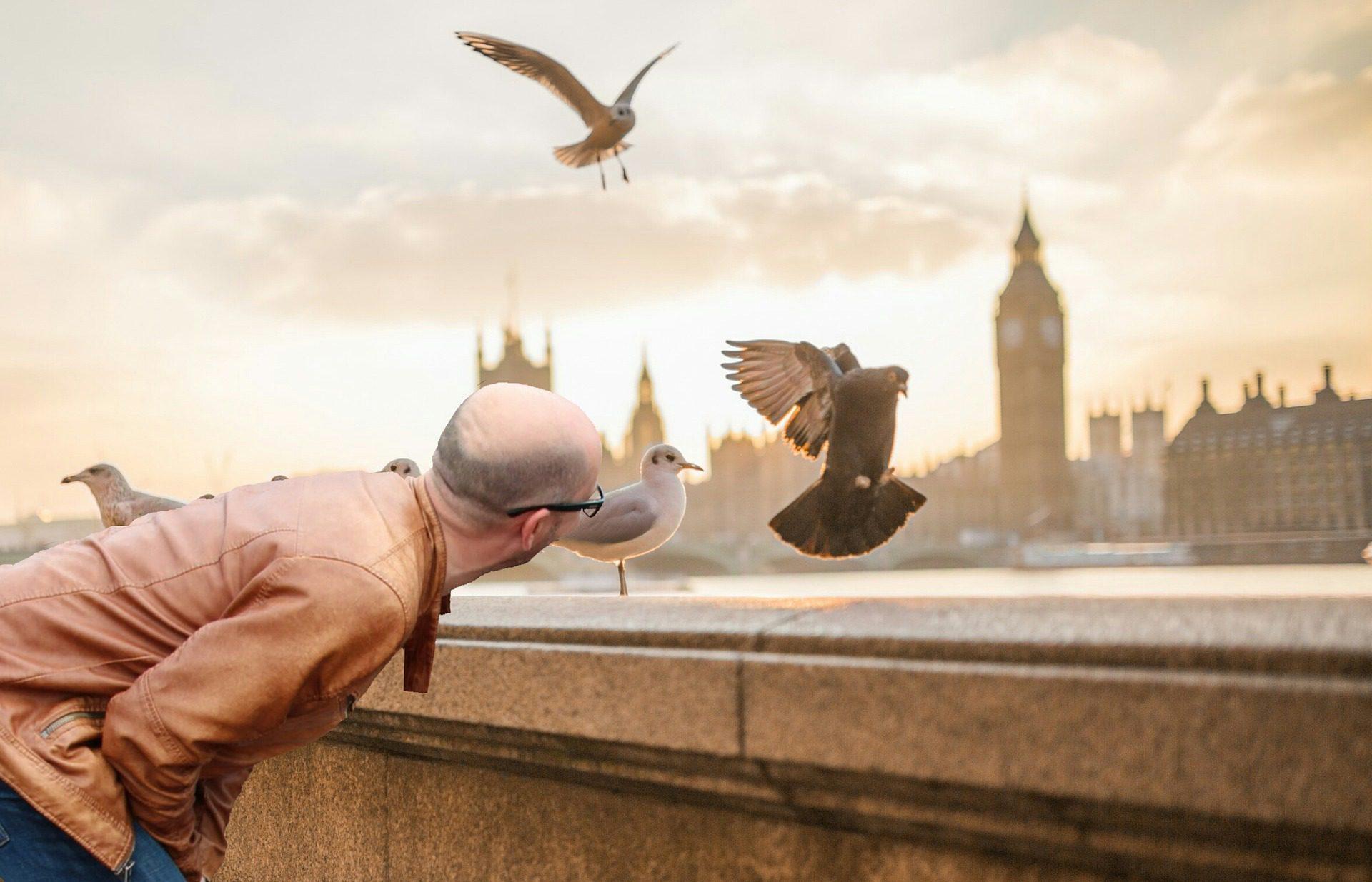 Londres en trois étapes