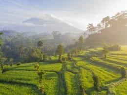 4 idées d'escapades dans la Vallée de Sidemen à Bali