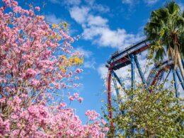 Une visite du parc d'attractions de Busch Gardens à Tampa