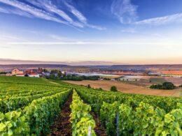 Les plus belles routes des vins de France