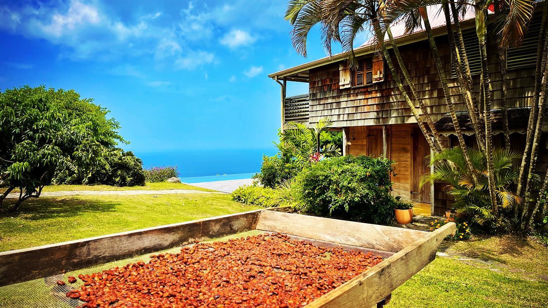 Pourquoi les touristes devraient venir visiter la Guadeloupe?