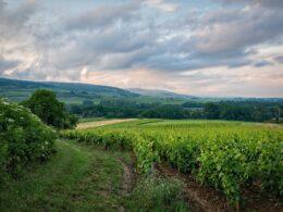 Un séjour en Bourgogne-Franche-Comté