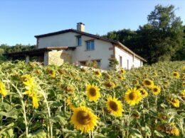 La Mariette : une maison d'hôte pleine de charme pour vos week-ends romantiques !